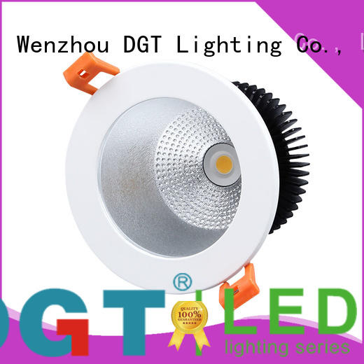 DGT Lighting led downlight globes factory price for spa