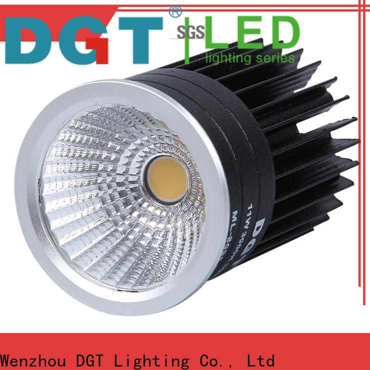 DGT Lighting mr16 led bulb personalized for indoor